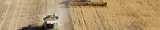 WEA Media Release- questions for operators of grain pools